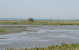Thumbnail voor Spuimond-West geleverd aan Vereniging Natuurmonumenten