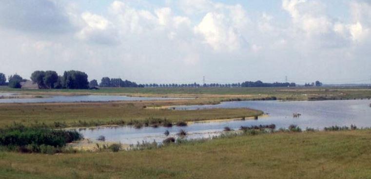 Afbeelding voor Natuurgebied de Wolvenpolder, een jaar later