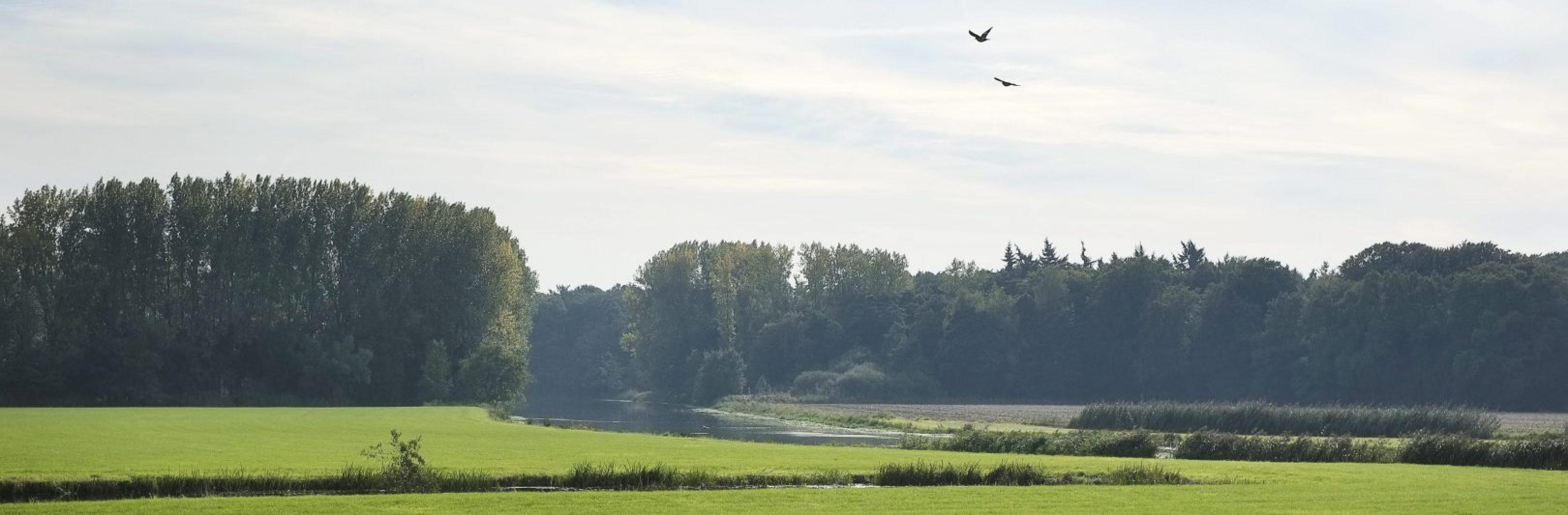 St Michielsgestel Oud Herlaer (1214)